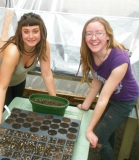 Greenhouse Girls (Well Grounded)